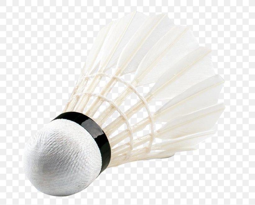 Badminton Net Sport, PNG, 740x661px, Badminton, Athlete, Ball, Brush, Net Download Free