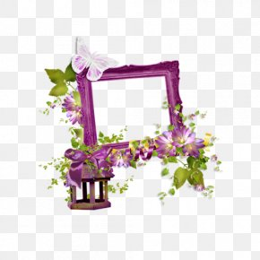 Flower - Floral Design Picture Frames Photography Flower Drawing PNG