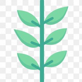 Leaf - Leaf Green Plant Stem Font PNG