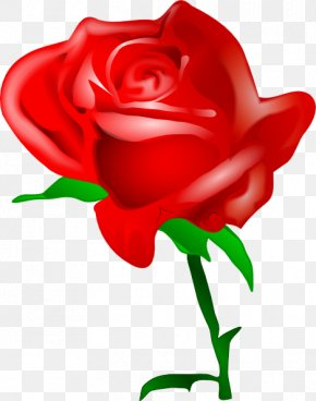Cartoon Rose Pictures - Rose Flower Clip Art PNG