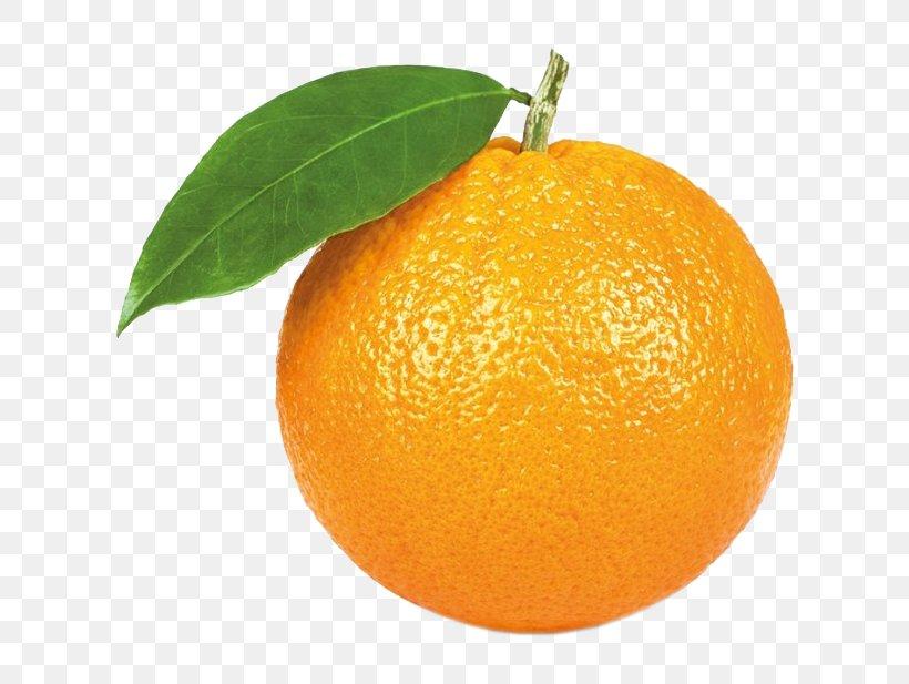 Orange Juice Citrus × Sinensis Stock Photography Mandarin Orange, PNG, 617x617px, Orange Juice, Bitter Orange, Calamondin, Chenpi, Citric Acid Download Free