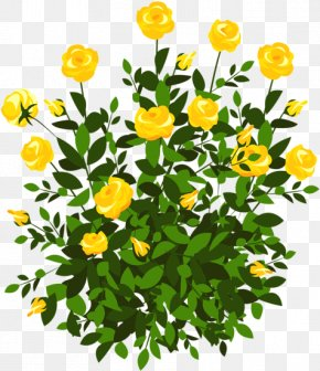 Spring Planting Flowers - Clip Art Openclipart Rose Shrub PNG
