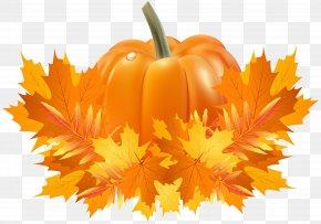 Fall Leaves And Pumpkin Decoration Clip Art - Pumpkin Pie Cucurbita Pepo Cucurbita Argyrosperma Crookneck Pumpkin PNG