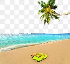 Summer Beach Poster Background - Vacation Summer Beach PNG