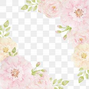 Flowers Borders - Pink Flowers Beach Rose Clip Art PNG