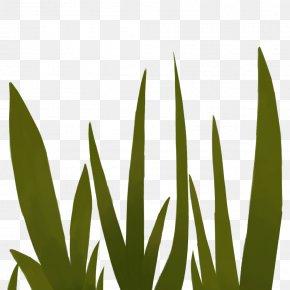 Leaf - Leaf Grasses Plant Stem Font PNG