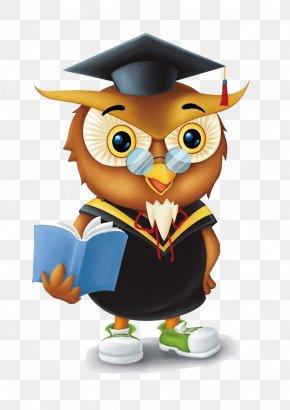 Owl - Owl Bird Cartoon PNG