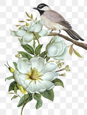 Free Hand-painted Flowers And Birds Decorative Patterns - Pixel Computer File PNG