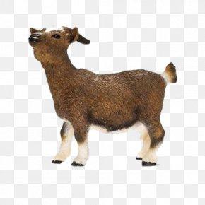Schleich - Nigerian Dwarf Goat Schleich Dwarf Goat Toy Figure Cattle Schleich Domestic Goat PNG