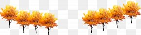 Autumn Golden Tree Decoration - Tree Computer File PNG
