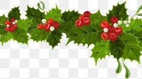 Santa Claus - Santa Claus Christmas Decoration Christmas Ornament Mistletoe Christmas Day PNG