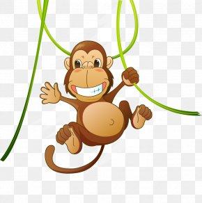 Cute Animal Cartoon Monkey - Baby Jungle Animals Clip Art PNG