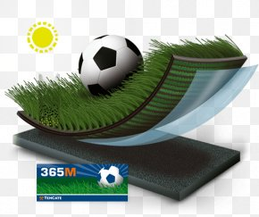 Artificial Grass - Lawn Artificial Turf Koninklijke Ten Cate Nv Product Rugby PNG