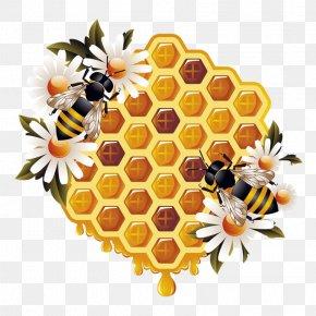 Beekeeping Border - Western Honey Bee Vector Graphics Beehive Worker Bee Beekeeping PNG