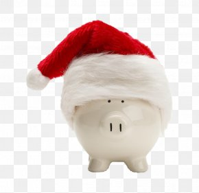 Piggy Bank With A Christmas Hat - Santa Claus Domestic Pig Piggy Bank Christmas PNG