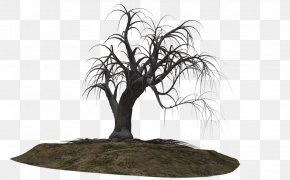 Creepy Tree - Tree Woody Plant Clip Art PNG