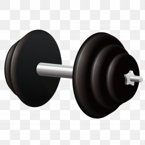 Black Barbell - Sports Equipment PNG