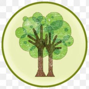 Tree - Tree Logo Trunk Branch PNG
