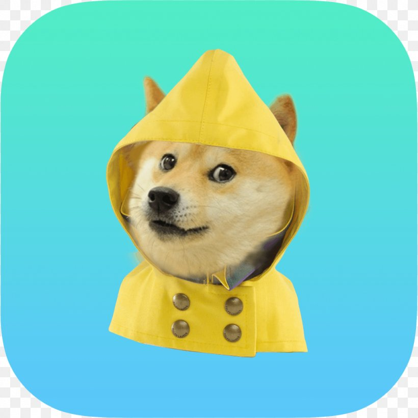 27+ Weather Puppy App Free Images