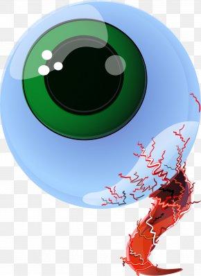Vector Eye - Graphic Design Eye Euclidean Vector Illustration PNG