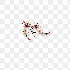 Peach Blossom - Summer Palace Slender West Lake Qingming U6545u4e8bu532f Zuimei PNG