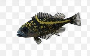 Ocean Fish Pic - Ocean 3D Computer Graphics PNG
