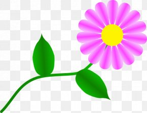 Gerbera Daisy Clipart - Common Daisy Clip Art PNG