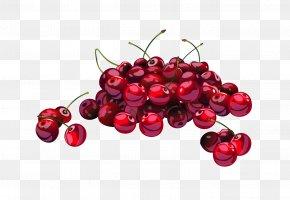 Cherry - Cherry Blossom Frutti Di Bosco Clip Art PNG