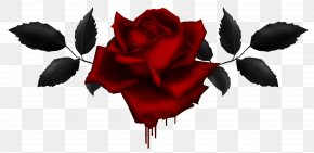 Gothic Rose Image - Display Resolution Clip Art PNG