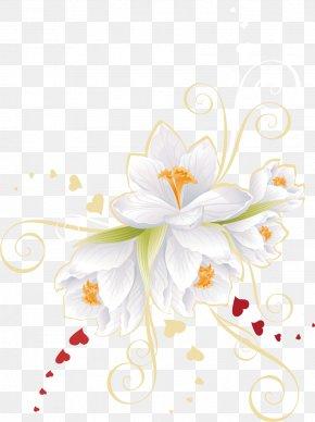 Vector White Flowers - Flower Euclidean Vector Clip Art PNG