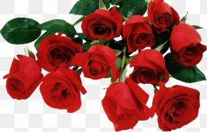 Valentine's Day - Valentine's Day Desktop Wallpaper Love High-definition Television PNG