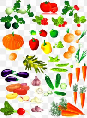 Vegetable Collection - Vegetable Clip Art PNG