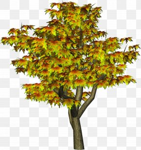 Flower Tree Cliparts - Tree Autumn Clip Art PNG