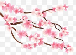 Pink Spring Branch Clipart Image - Diagram Branch Clip Art PNG