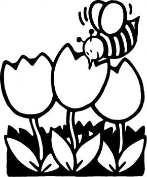 Flower Line Art - Black And White Flower Line Art Clip Art PNG