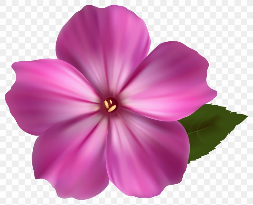 Pink Flowers Clip Art, PNG, 6278x5088px, Flower, Annual Plant, Color, Flowering Plant, Herbaceous Plant Download Free