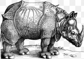 Vector Rhino - Dxfcrers Rhinoceros National Gallery Of Art British Museum Printmaking PNG