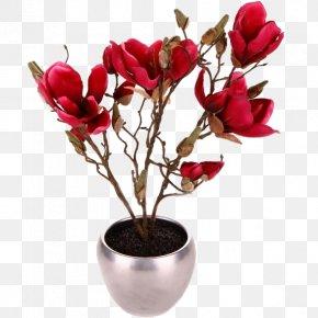 Flower - Magnolia Flowerpot Crock Plant PNG