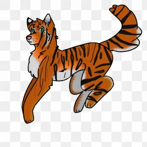 Tiger - Whiskers Tiger Cat Felidae Red Fox PNG