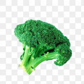 A Broccoli - Broccoli Sulforaphane Vegetable PNG