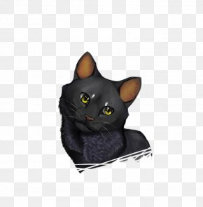 Happy Cat - Korat Bombay Cat Domestic Short-haired Cat Whiskers Snout PNG