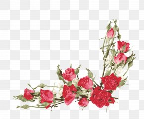 Red Rose Border - Rose Flower Bouquet Clip Art PNG