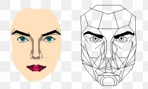 Golden Ratio Face - Eyebrow Golden Ratio Face PNG