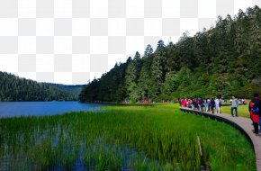 Pudacuo Forest Park Attractions - Mount Rainier Potatso National Park Komodo National Park Forest Park Grand Canal PNG