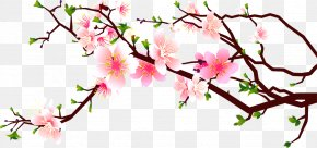 Peach Corner Decoration - Cherry Blossom Peach Clip Art PNG