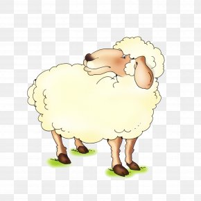 Sheep - Latxa Goat Cattle Drawing Eid Al-Adha PNG
