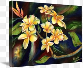 Plumeria - Modern Art Floral Design Oil Painting Reproduction Watercolor Painting PNG