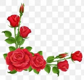 Red Flower Frame Free Download - Rose Flower Pink Clip Art PNG