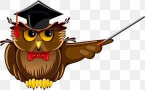 Owl - Owl Teacher School Clip Art PNG
