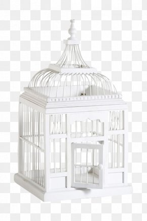 White Bird Cage - Birdcage Birdcage Lovebird White PNG